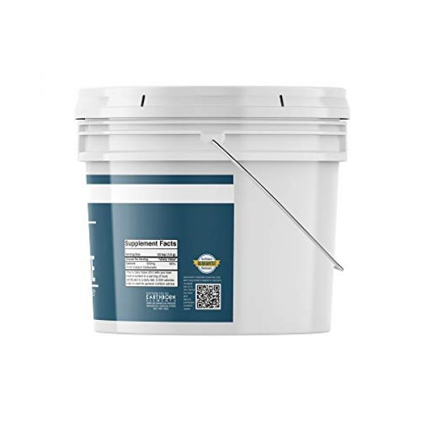 Earthborn Elements Calcium Supplement 4 Calcium Carbonate Powder (1 Gallon (8 lb.)) by Earthborn Elements, Limestone Powder, Food & USP Pharmaceutical Grade, Toothpaste Additive, DIY Chalk Paint