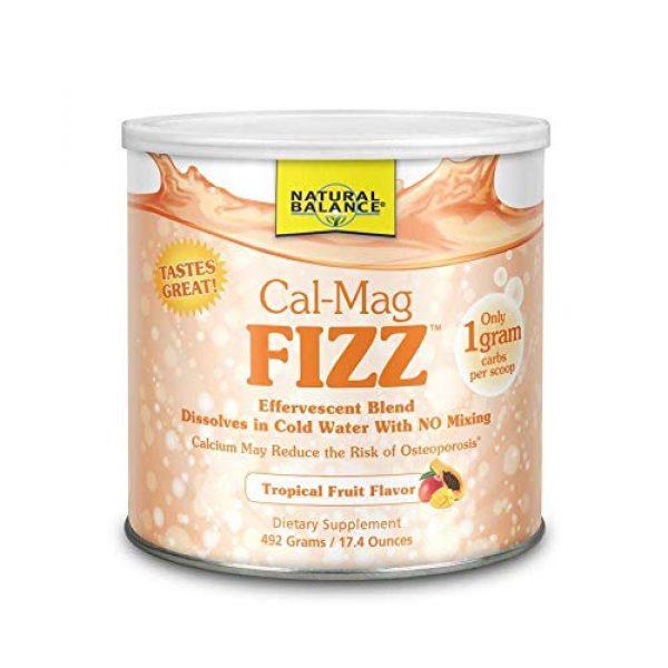 Baywood Calcium Supplement 1 Baywood Cal Mag Fizz, Tropical Fruit, 17.4 Ounce
