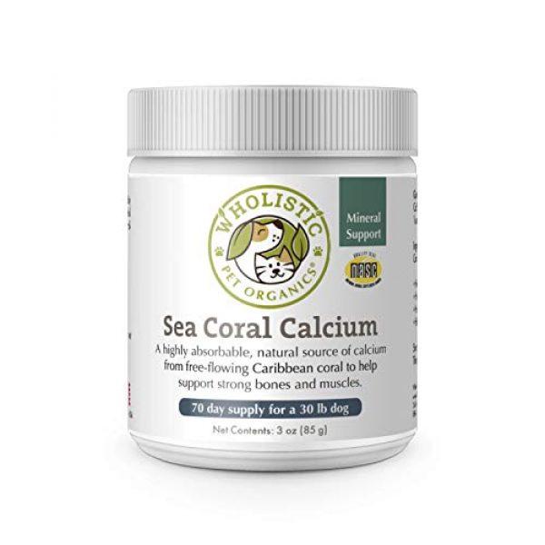 Wholistic Pet Organics Calcium Supplement 1 Wholistic Pet Organics Sea Coral: Organic Sea Coral Calcium Dog Supplement - Natural Source of Calcium for Dogs Teeth and Bone Health - Natural Marine Coral Calcium Vitamins for Dogs - 3 Oz