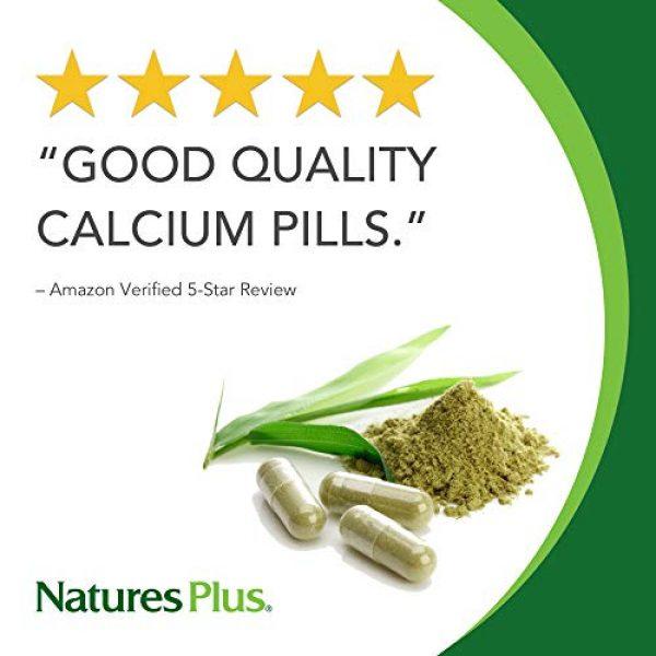 Nature's Plus Calcium Supplement 2 NaturesPlus Advanced Therapeutics Ostivone Rx Bone - 60 Vegetarian Tablets - Maximum Nutritional Support for Skeletal System & Bones - with Vitamin D, Calcium - Gluten-Free - 30 Servings