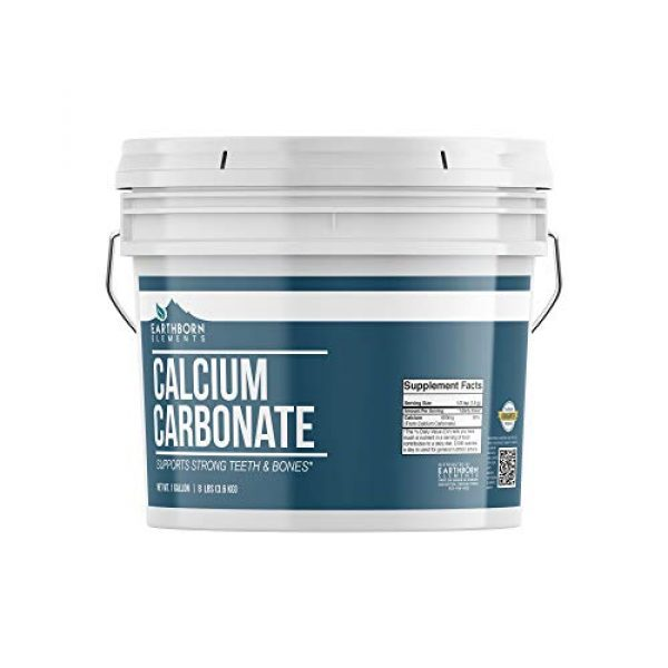 Earthborn Elements Calcium Supplement 1 Calcium Carbonate Powder (1 Gallon (8 lb.)) by Earthborn Elements, Limestone Powder, Food & USP Pharmaceutical Grade, Toothpaste Additive, DIY Chalk Paint