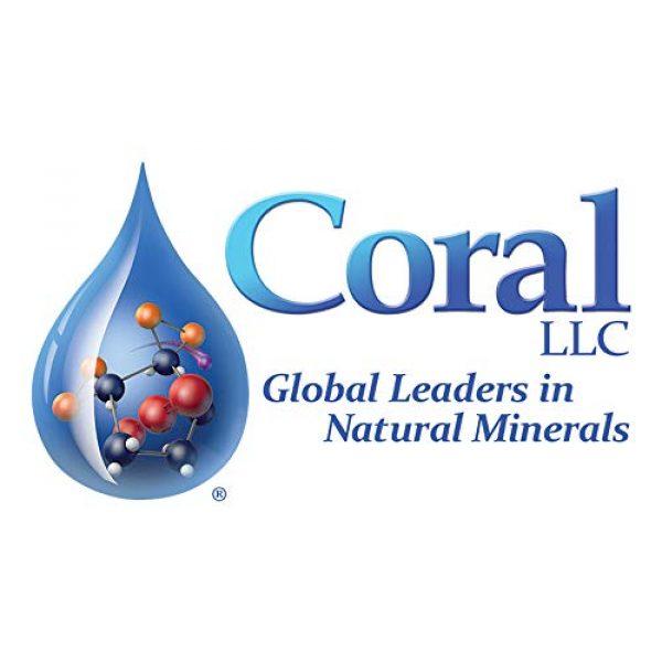 Coral LLC Calcium Supplement 6 Coral LLC Coral Alkaline Water Sachets,30 Sachets