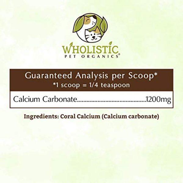 Wholistic Pet Organics Calcium Supplement 4 Wholistic Pet Organics Sea Coral: Organic Sea Coral Calcium Dog Supplement - Natural Source of Calcium for Dogs Teeth and Bone Health - Natural Marine Coral Calcium Vitamins for Dogs - 3 Oz
