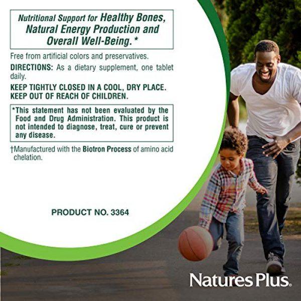 Nature's Plus Calcium Supplement 7 NaturesPlus Cal/Mag - 500 mg Calcium, 250 mg Magnesium, 180 Vegetarian Tablets - Bone Health Support Supplement, Promotes Heart Health - Gluten-Free - 180 Servings