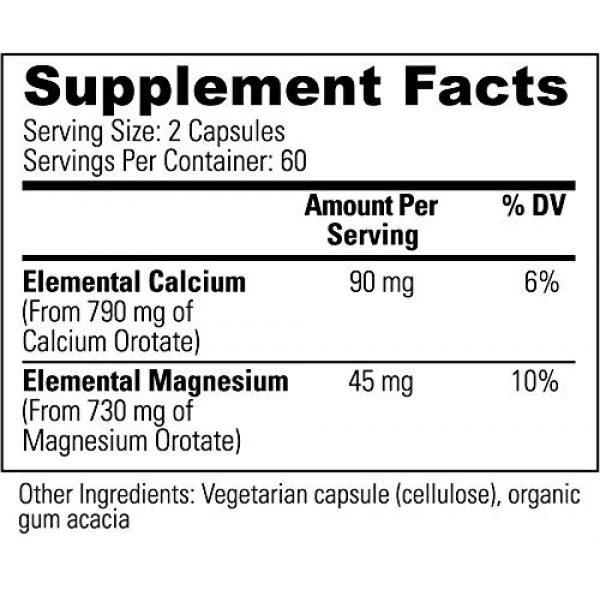 Global Healing Center Calcium Supplement 3 Global Healing Center IntraCal Natural Calcium and Magnesium Supplement for Maximum Absorption (120 Capsules)
