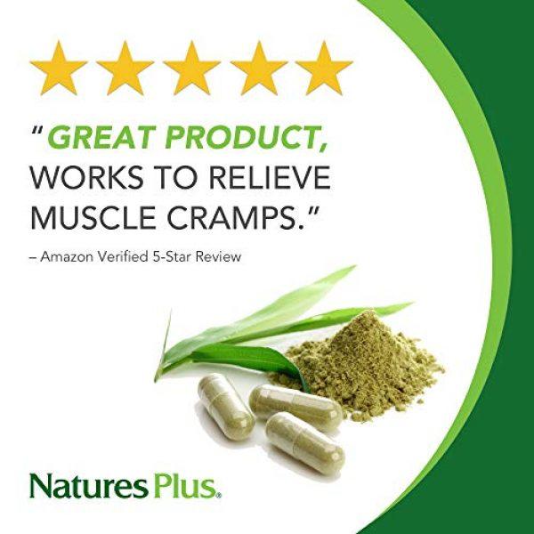 Nature's Plus Calcium Supplement 2 NaturesPlus Dyno Mins Calcium - 90 Vegetarian Tablets - Enhanced Absorption Bone Health & Strength Support - Hypoallergenic, Gluten-Free - 45 Servings