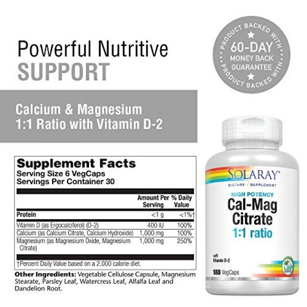 Solaray Calcium Supplement 2 Solaray Calcium & Magnesium Citrate with Vitamin D-2, 1:1 Ratio | for Healthy Bones, Teeth, Muscle & Nervous System Function | High Absorption | 180 Count