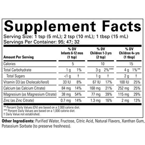 CHILDLIFE ESSENTIALS Calcium Supplement 6 ChildLife Essentials Liquid Calcium/Magnesium for Infants, Babys, Kids, Toddlers, Children, and Teens, Natural Orange Flavor Plastic Bottle, 16-Fl. Oz. (Pack of 3)