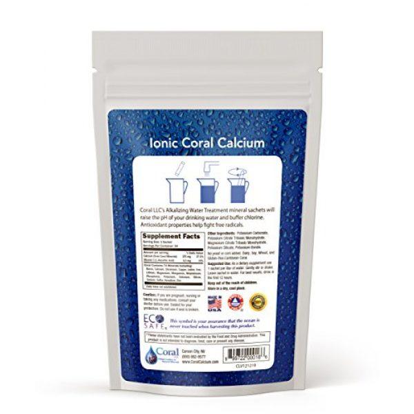 Coral LLC Calcium Supplement 2 Coral LLC Coral Alkaline Water Sachets,30 Sachets