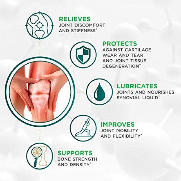 Genacol Calcium Supplement 6 Genacol Bone Health and Joint Support Supplement with Calcium, Boron, Magnesium, Vitamin D3 & Hydrolyzed Collagen   Bone Density Supplements for Women and Men (90 Capsules)