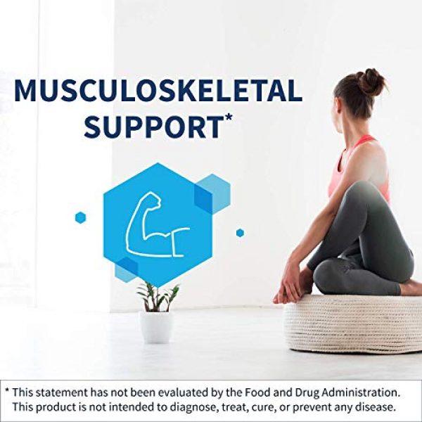 Klaire Labs Calcium Supplement 2 Klaire Labs Osteothera Capsules - Hypoallergenic & Multifactorial Bone Support Formula with Calcium, Vitamin K, D3, Magnesium & Boron (120 Capsules)