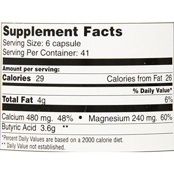 T.E. Neesby Calcium Supplement 5 Butyrex Calcium/Magnesium Butyrate Complex: 250 Capsules