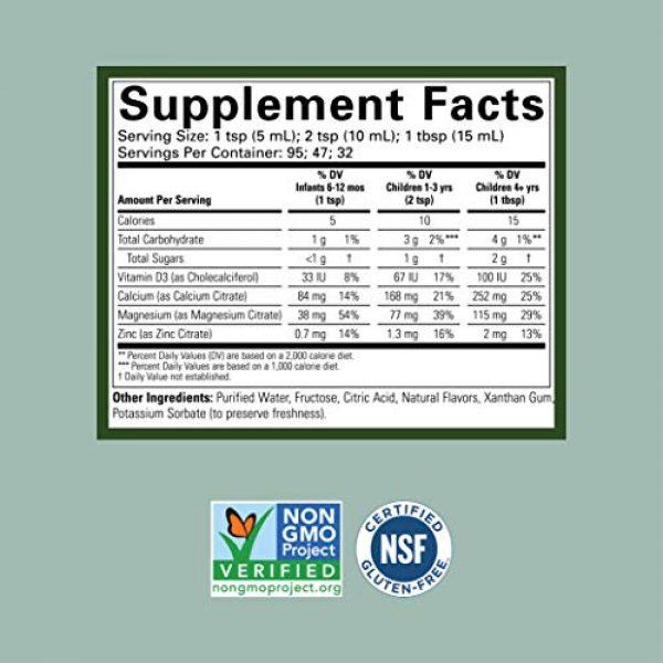 CHILDLIFE ESSENTIALS Calcium Supplement 2 ChildLife Essentials Liquid Calcium with Magnesium for Infants, Babys, Kids, Toddlers, Children, and Teens Orange Flavored Dietary Supplement, 16 oz (Pack of 4)
