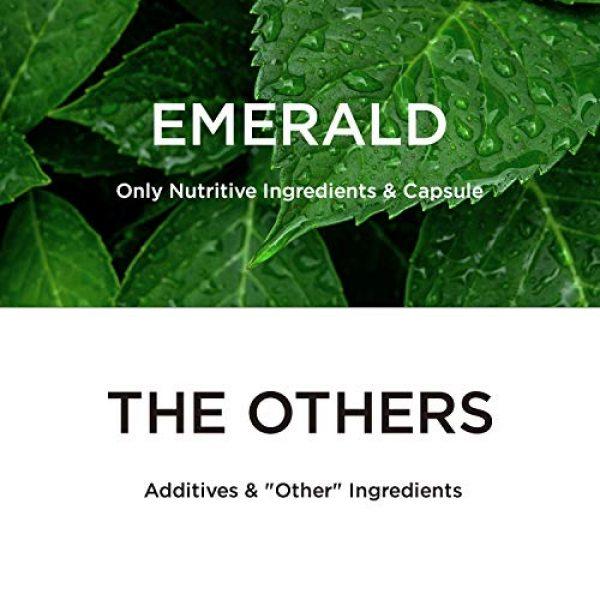 Ultra Botanicals Calcium Supplement 6 Emerald Labs Calcium Magnesium Citrate with 1,200 IU Vitamin D for Bone Support, Helps Maintain Immune System Health - 180 Capsules