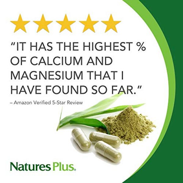 Nature's Plus Calcium Supplement 2 NaturesPlus Dolomite 44 Grain - 300 Vegetarian Tablets - Calcium & Magnesium Supplement, Heart Health Support, Promotes Healthy Bones - Hypoallergenic, Gluten-Free - 75 Servings