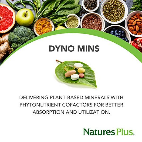 Nature's Plus Calcium Supplement 3 NaturesPlus Dyno Mins Calcium - 90 Vegetarian Tablets - Enhanced Absorption Bone Health & Strength Support - Hypoallergenic, Gluten-Free - 45 Servings
