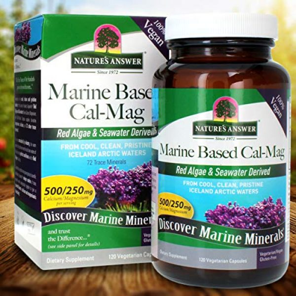 Nature's Answer Calcium Supplement 5 Nature's Answer Marine Based Calcium Magnesium, Super Concentrated 500mg   Plant Based   Red Algae & Seawater Derived   Alcohol-Free & Gluten-Free   Vegetarian Capsules 120ct