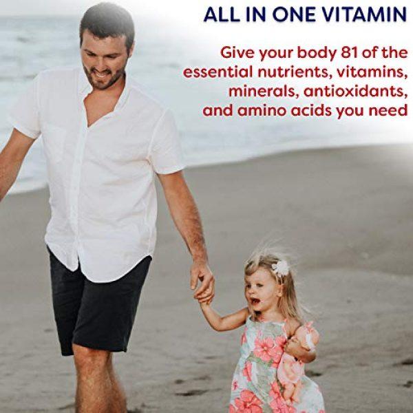Wellgenix Calcium Supplement 5 Wellgenix Sea Essentials Coral Calcium Liquid Vitamin for High Absorption - Nutritional Multivitamin Supplement - Sea Berry Flavor (32 oz) (1 Pack)