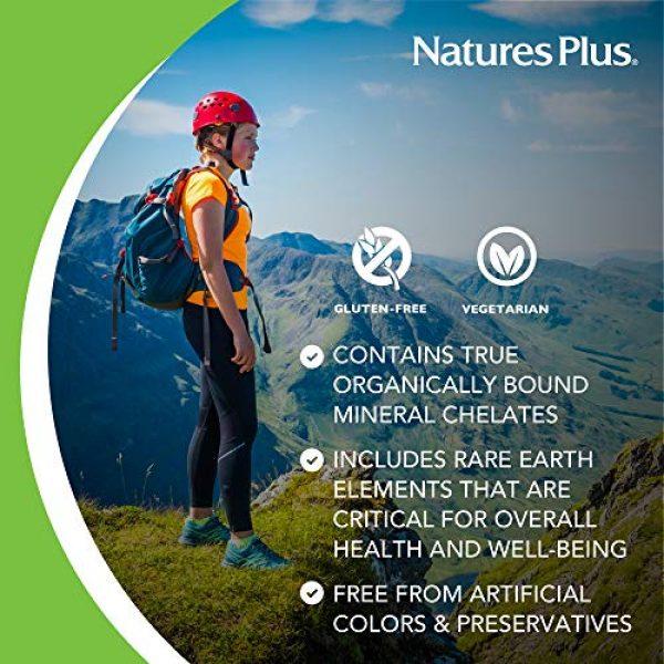 Nature's Plus Calcium Supplement 4 NaturesPlus Dyno Mins Calcium - 90 Vegetarian Tablets - Enhanced Absorption Bone Health & Strength Support - Hypoallergenic, Gluten-Free - 45 Servings