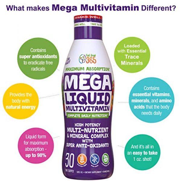 Feel Great 365 Calcium Supplement 6 Feel Great Vitamin Co. Superfood Mega Liquid Multivitamin | Natural Immune Support including Vitamins & 72 Trace Minerals, Vitamin D3, E, Glutathione, Resveratrol, Milk Thistle, Green Tea, Ginseng & More