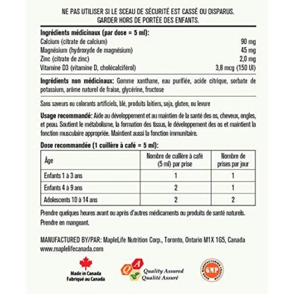MapleLife Calcium Supplement 2 MapleLife Kids Calcium, Magnesium and Zinc + D Strawberry, 475 ml