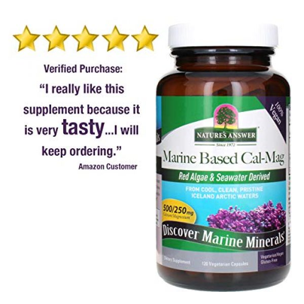 Nature's Answer Calcium Supplement 4 Nature's Answer Marine Based Calcium Magnesium, Super Concentrated 500mg   Plant Based   Red Algae & Seawater Derived   Alcohol-Free & Gluten-Free   Vegetarian Capsules 120ct