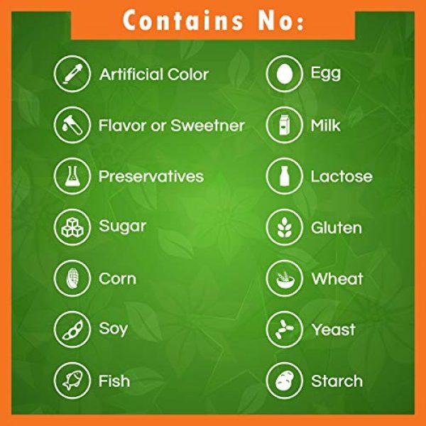 Best Naturals Calcium Supplement 3 Best Naturals Coral Calcium Plus 1000 mg 250 Capsules