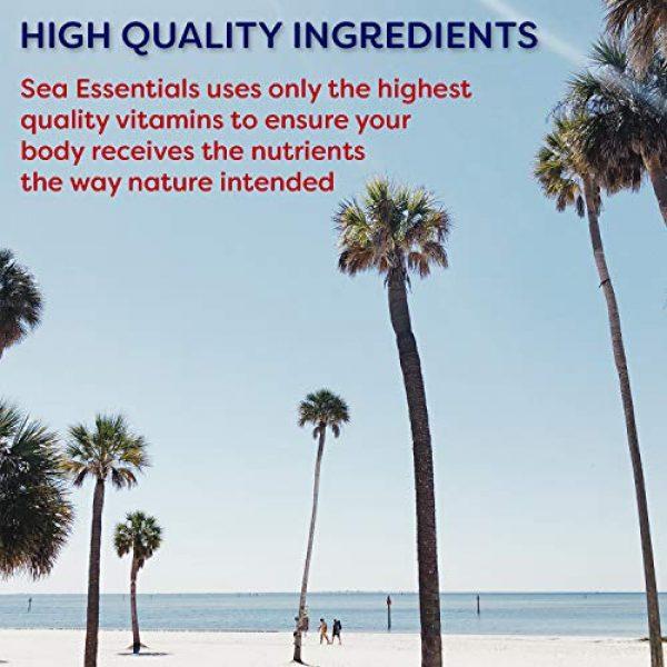 Wellgenix Calcium Supplement 6 Wellgenix Sea Essentials Coral Calcium Liquid Vitamin for High Absorption - Nutritional Multivitamin Supplement - Sea Berry Flavor (32 oz) (1 Pack)