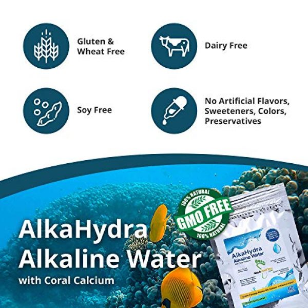 Gout and You Calcium Supplement 6 AlkaHydra Alkaline Water with Coral Calcium - 60 Sachets - 960 Glasses