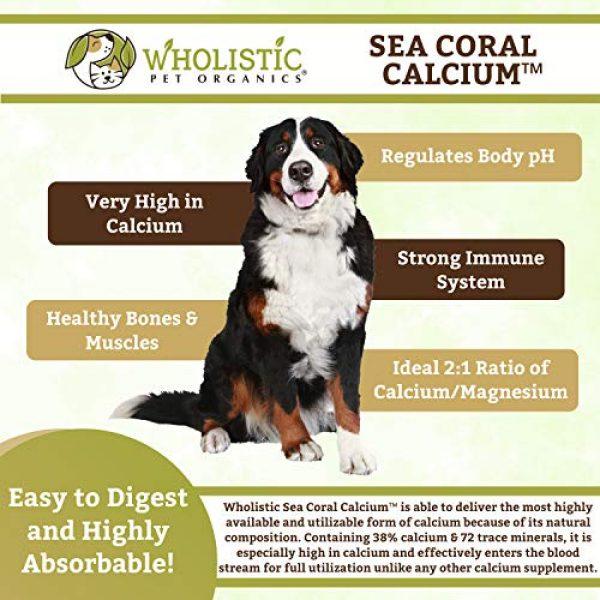 Wholistic Pet Organics Calcium Supplement 5 Wholistic Pet Organics Sea Coral: Organic Sea Coral Calcium Dog Supplement - Natural Source of Calcium for Dogs Teeth and Bone Health - Natural Marine Coral Calcium Vitamins for Dogs - 3 Oz