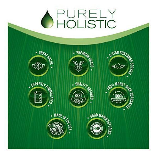 Purely Holistic Calcium Supplement 2 Calcium Citrate 1000mg - 365 Vegan Capsules not Tablets - Supports Health of Bones and Teeth - with Added Parsley, Dandelion and Watercress - Without Vitamin D - Made in The USA by Purely Holistic