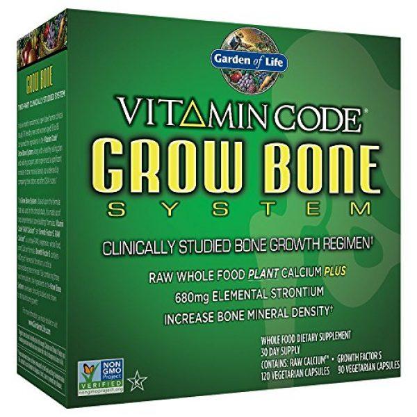 Garden of Life Calcium Supplement 1 Garden of Life Raw Calcium Supplement - Grow Bone System Whole Food Vitamin with Strontium, Vegetarian