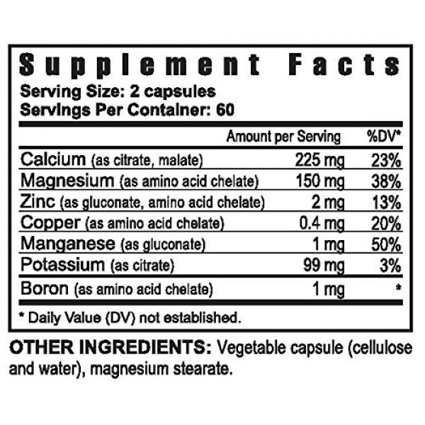 YNG Calcium Supplement 2 Bio Calcium & multi Mineral - 120 caps